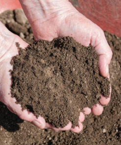 Topsoil Products