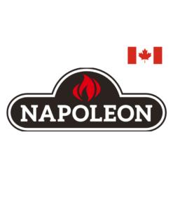 Napoleon Premium BBQ'S